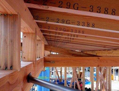 現場・屋根の骨組み